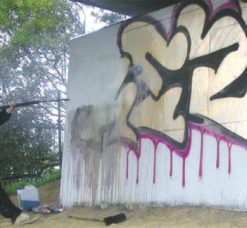 Graffiti & Paint Removers
